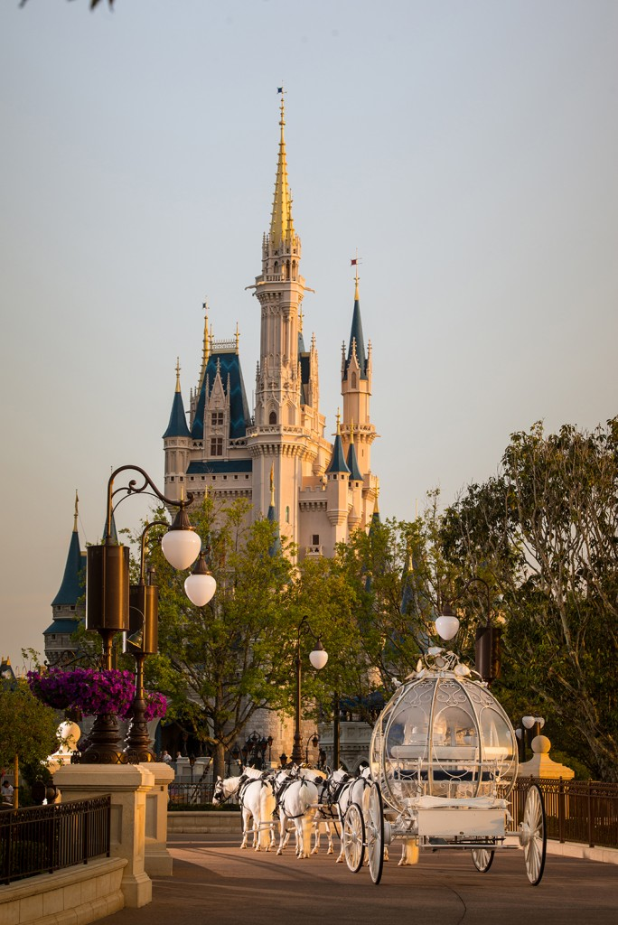 DisneyFantasyWeddings3