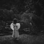 mariage, ange, nature,