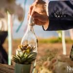 Mariage Réunion Ma Régisseuse wedding planner cérémonie laïque plage filaos vœux bouteille plante grasse