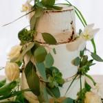 Mariage Ma Régisseuse S&J gay homosexuel naked cake