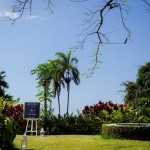 Mariage Réunion Ma Régisseuse wedding planner jardin ardoise tropical