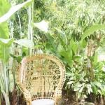 mariage, décoration, nature,