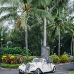 mariage, voiture, réunion, palmiers,